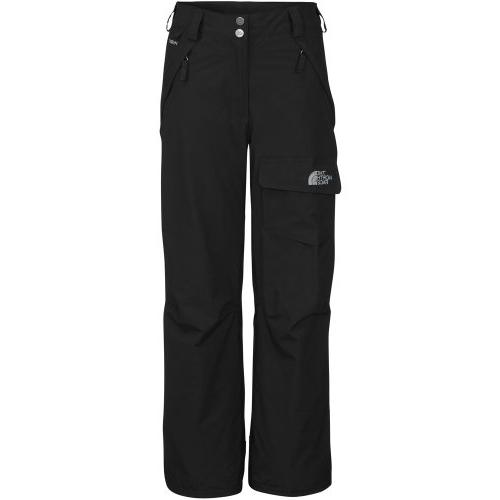 freedom insulated pant tnf black